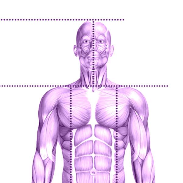 Body Assessment
