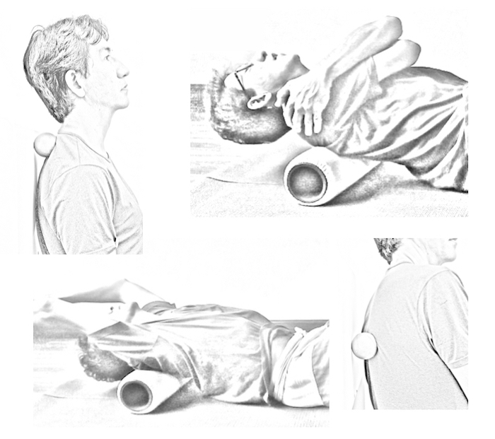 release-torso-neck